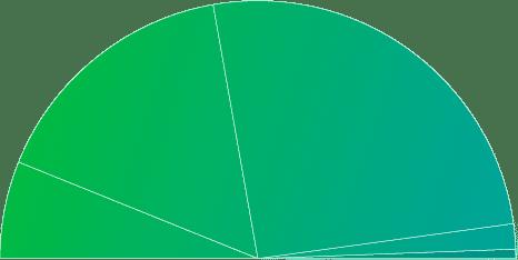Semi circle pie chart